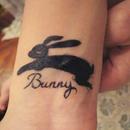 Bunny 圖像