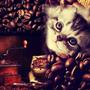 Cafecat888
