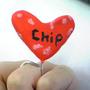 chipko1219