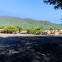forever6471816
