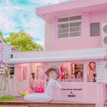 CHU PINK HOUSE