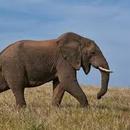 中小企業貸款補助 圖像