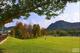 創作者 紓困貸款評分表 的頭像