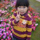 J-Ling 圖像