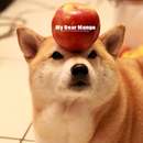 愛吃吃 Mango 圖像