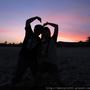棕櫚與太陽