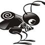 如何除白蟻