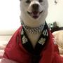 Yuki麻
