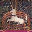 YUKA 柚夏