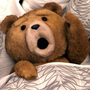 teddy911