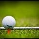 創作者 世貿高爾夫球場 的頭像