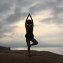 yogiii